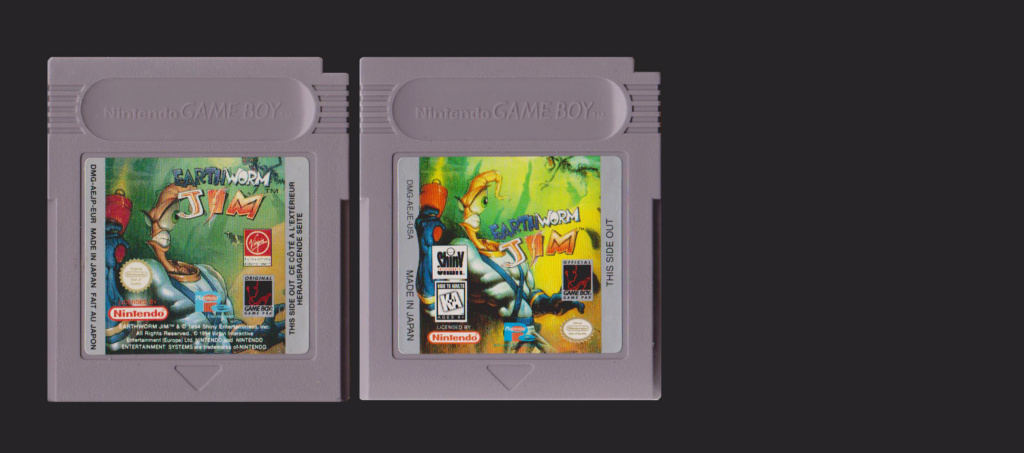Jeux Gameboy : cartouches, variantes, anecdotes Earthw10