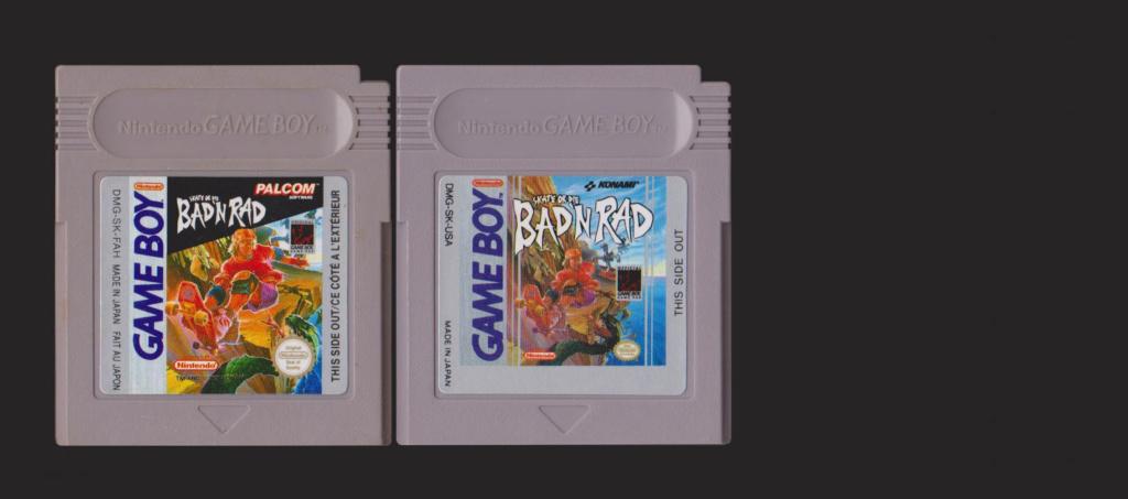 Jeux Gameboy : cartouches, variantes, anecdotes Skate_10