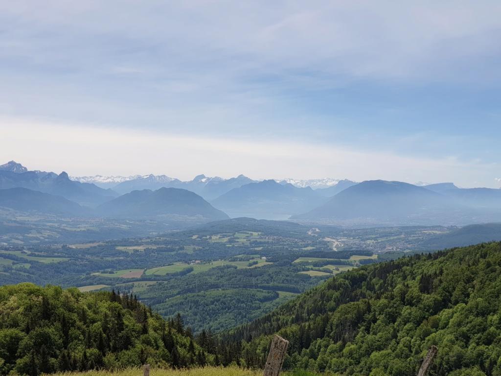 [VISUE] Les Alpes Genève Beaufort 22 mai - Page 4 20200558