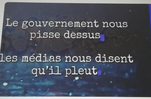 Humour et Politique - Page 15 Le_gou10