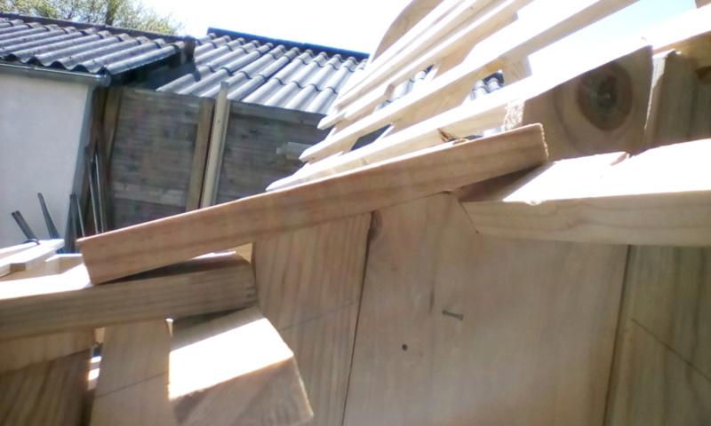 construction cabane de sorcière,  quelle colle pour bardeau bois?  Img_2032