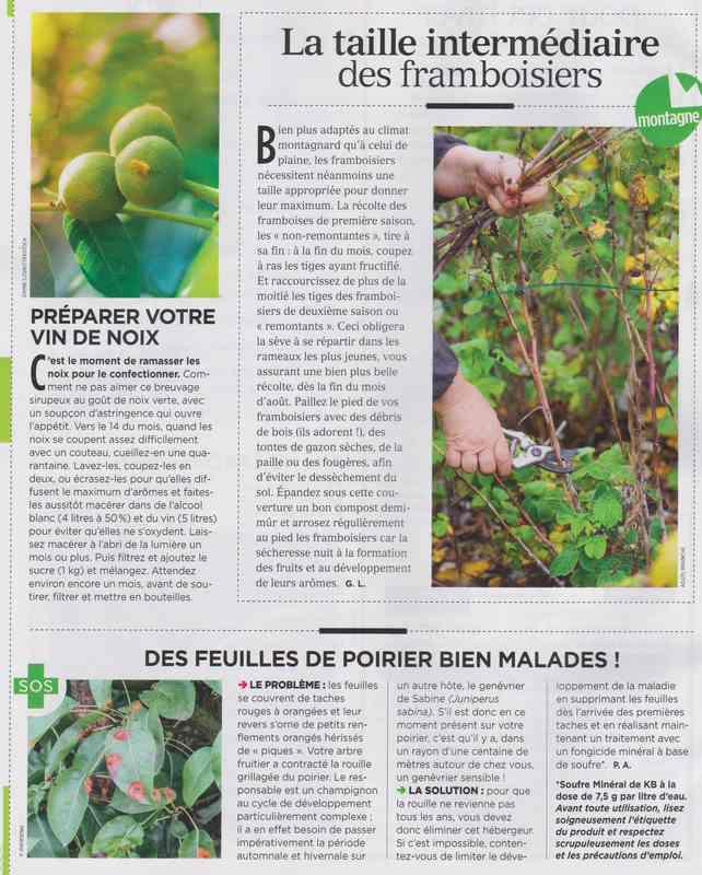 au jardin - Page 37 1011