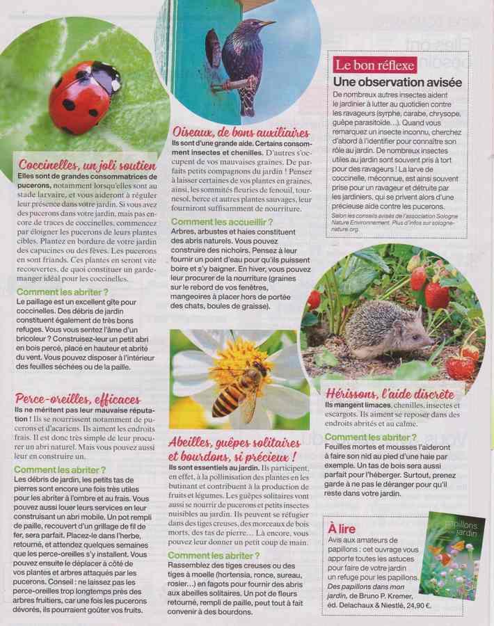au jardin - Page 36 110