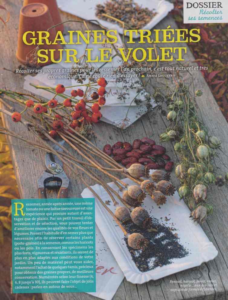 au jardin - Page 27 1122