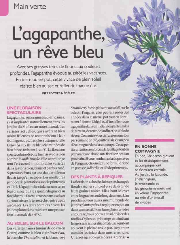 au jardin - Page 37 116