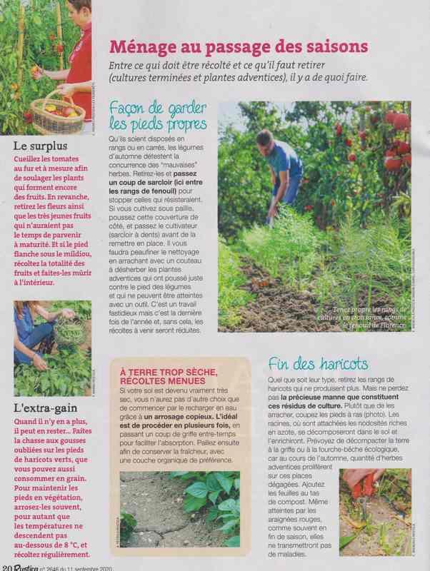 au jardin - Page 42 11a10