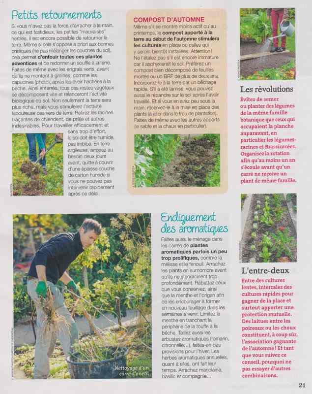 au jardin - Page 42 11b10