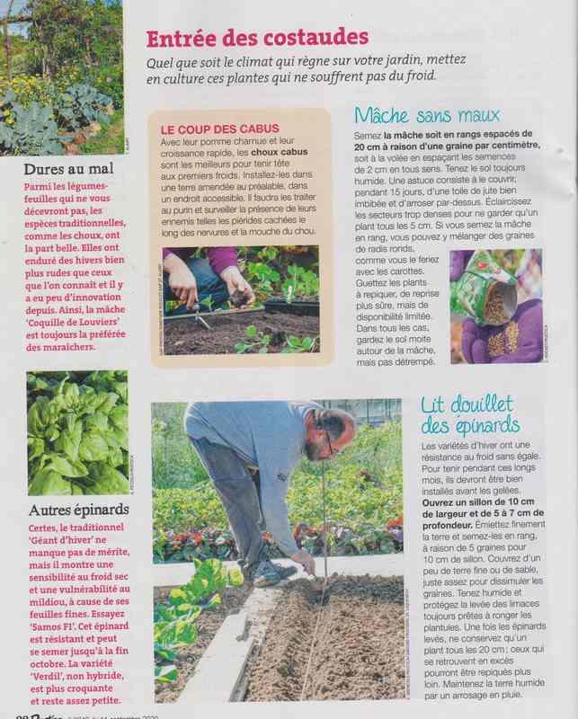 au jardin - Page 42 11c10