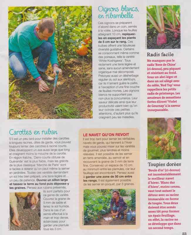 au jardin - Page 42 11d10