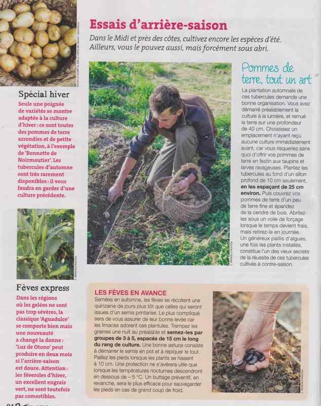 au jardin - Page 42 11e10