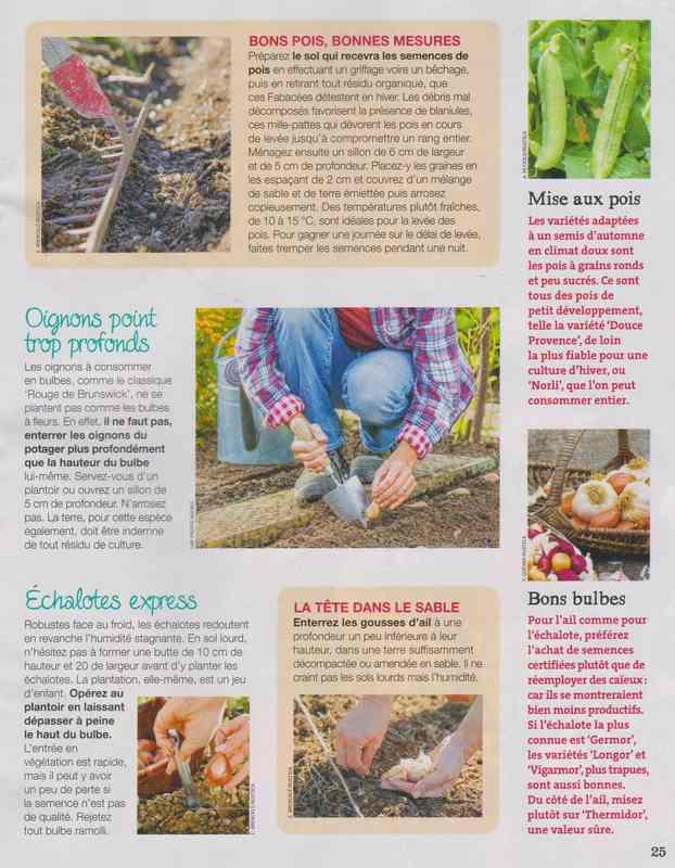 au jardin - Page 43 11f10