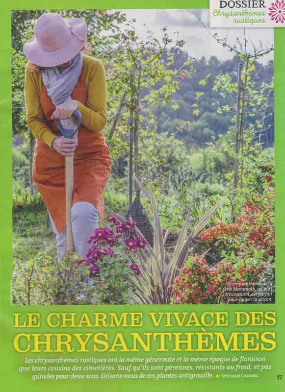 au jardin - Page 3 1215