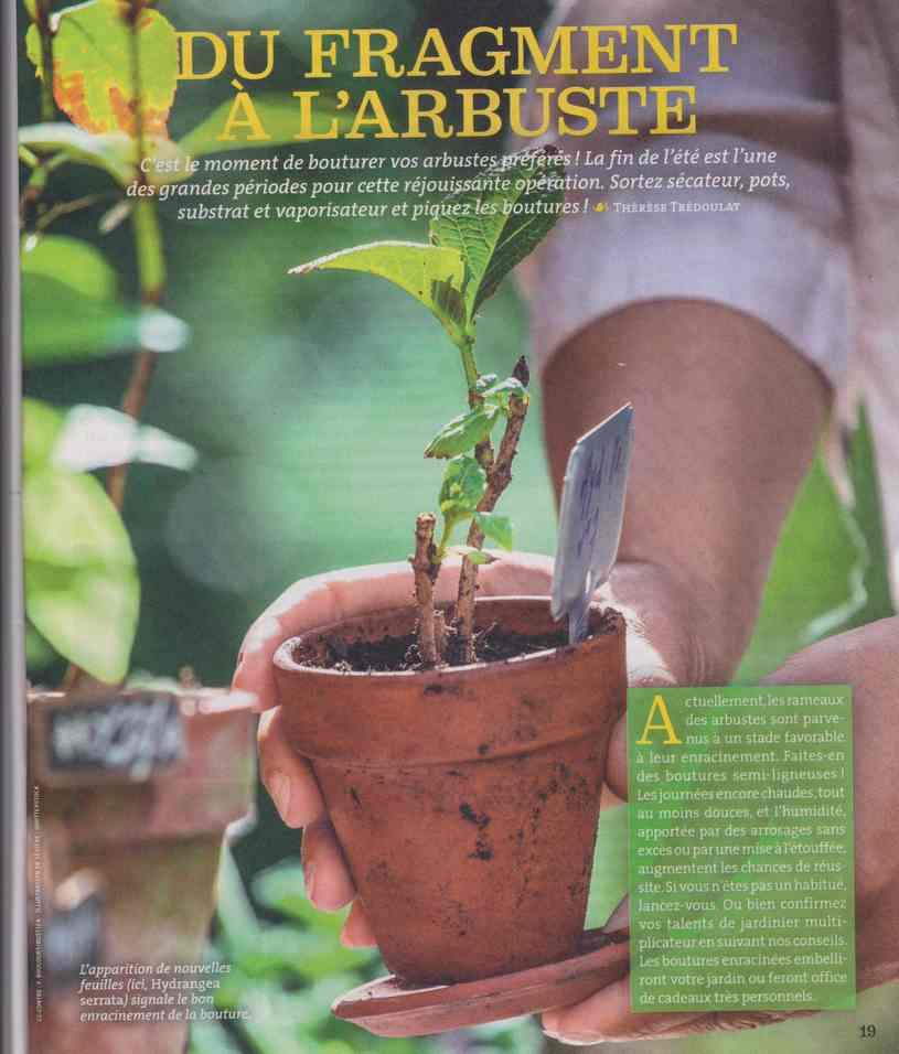 au jardin - Page 27 1220