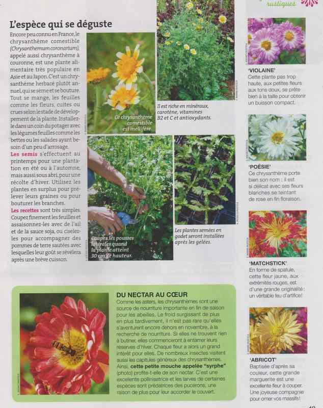 au jardin - Page 3 12b10