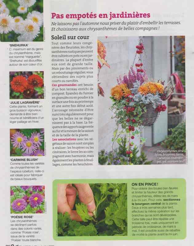au jardin - Page 3 12c10
