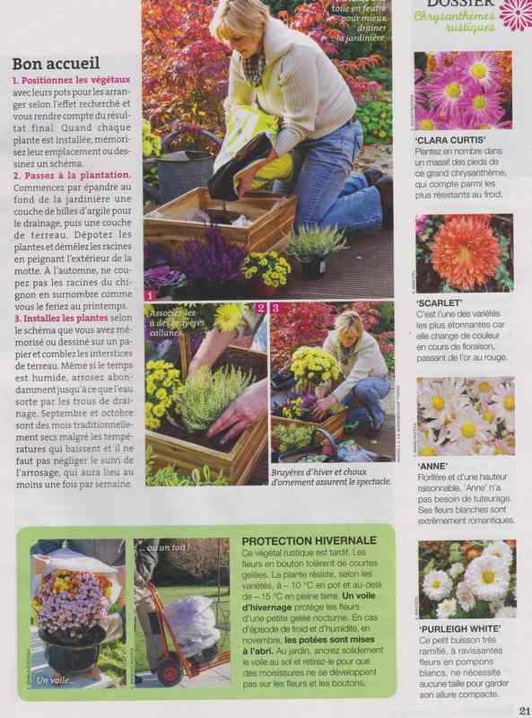 au jardin - Page 3 12d10