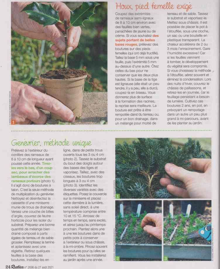 au jardin - Page 28 12g10