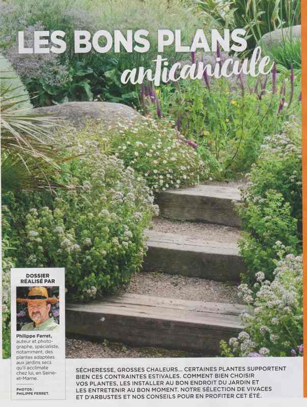 au jardin - Page 37 1312