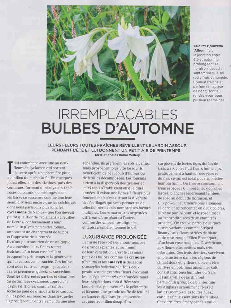 au jardin - Page 28 1321
