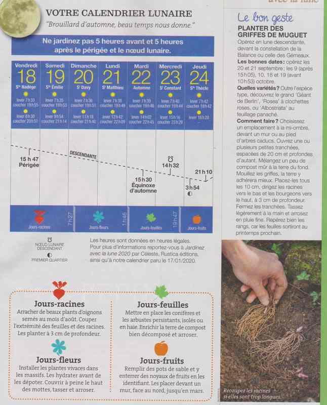 votre calendrier lunaire de la semaine - Page 7 137