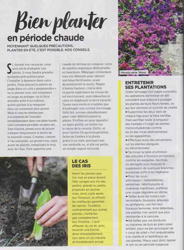 au jardin - Page 37 13a10