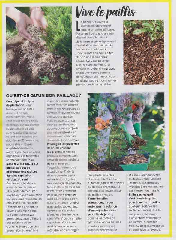 au jardin - Page 37 13b10