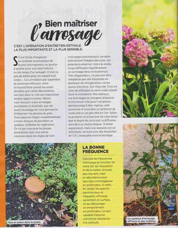 au jardin - Page 37 13d10
