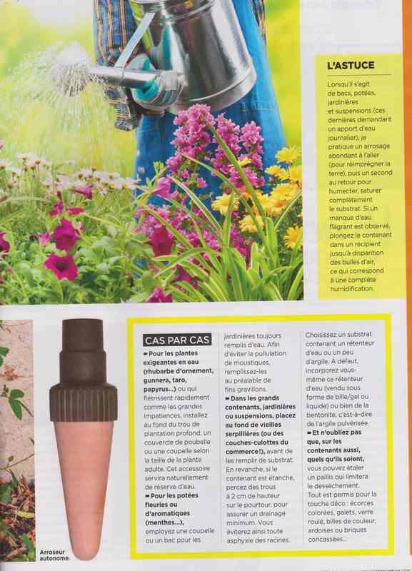 au jardin - Page 37 13e10