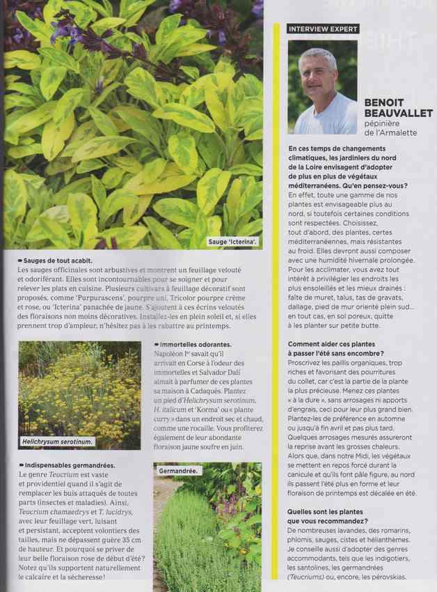 au jardin - Page 37 13i10