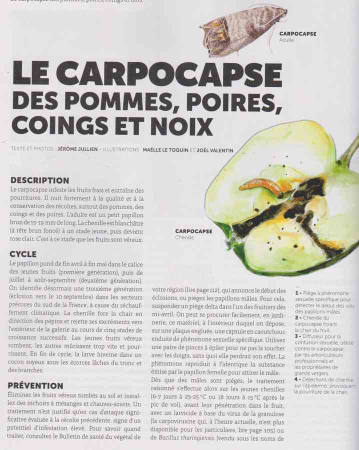 les bestioles - Page 2 1411