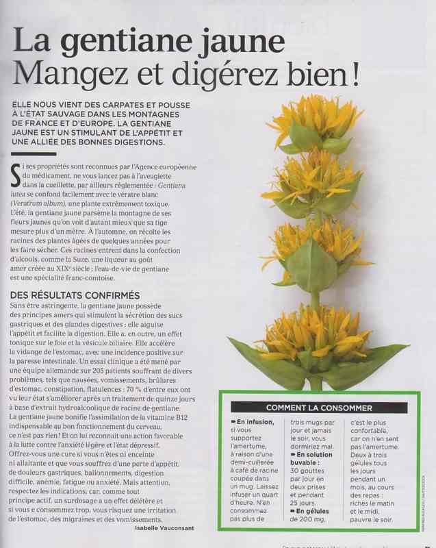 les plantes qui soignent - Page 13 144