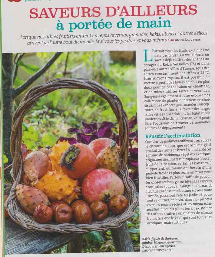 au jardin - Page 4 149