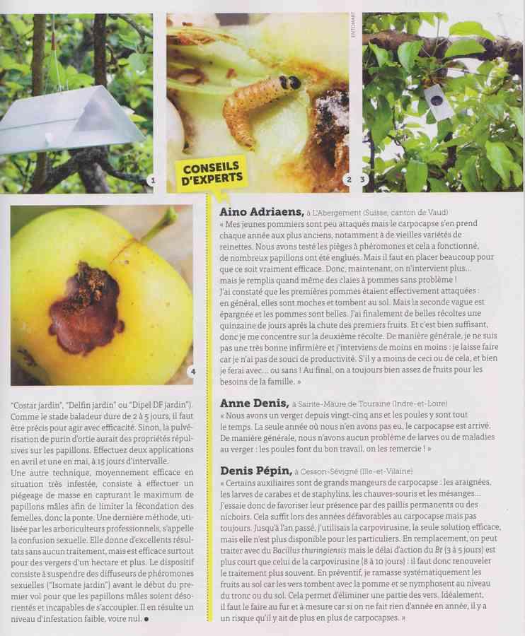 les bestioles - Page 2 14a11