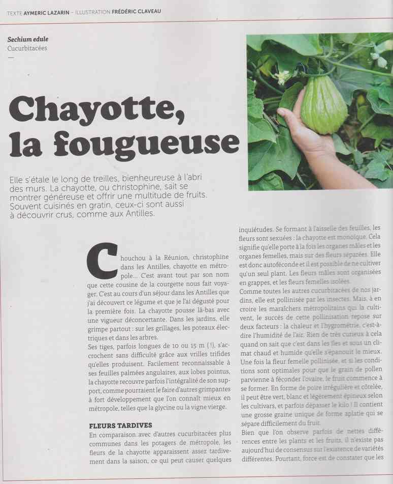 au jardin - Page 16 1519
