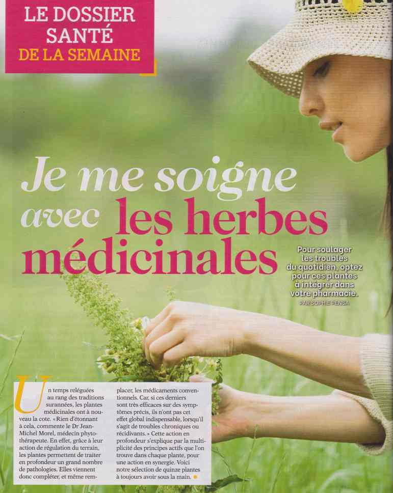 les plantes qui soignent - Page 20 1523