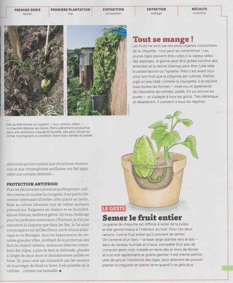 au jardin - Page 16 15a14