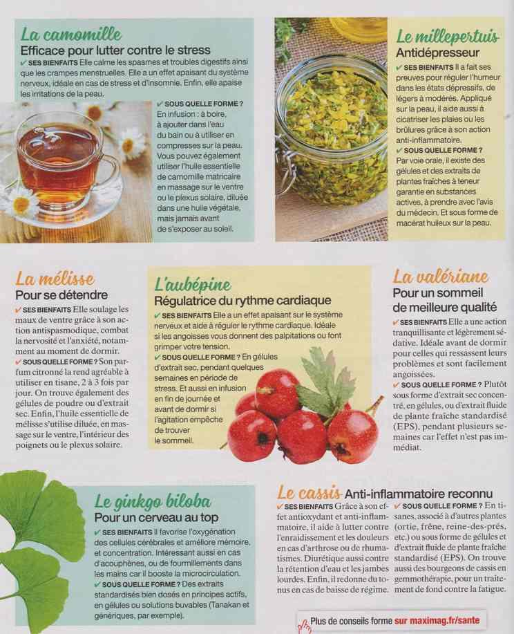 les plantes qui soignent - Page 18 15b12