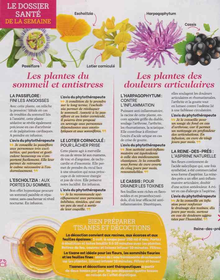 les plantes qui soignent - Page 20 15b14