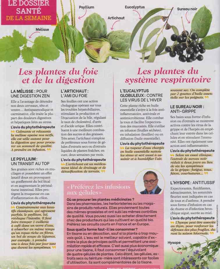 les plantes qui soignent - Page 20 15c13