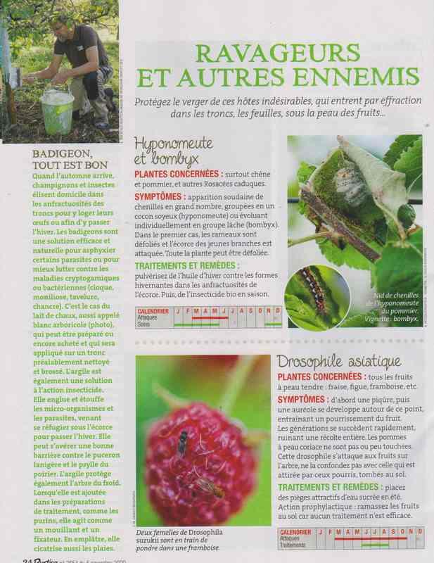 les bestioles - Page 3 161