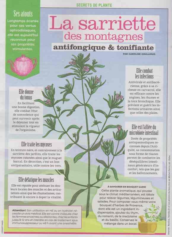 les plantes qui soignent - Page 20 178