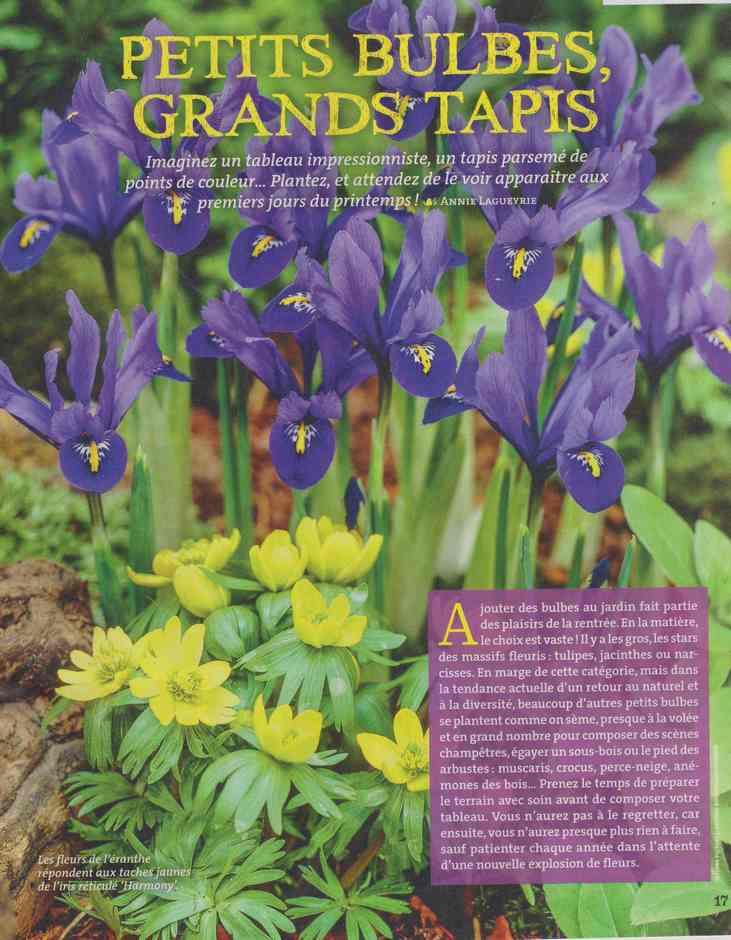 au jardin - Page 29 182