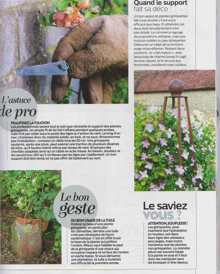 au jardin - Page 16 18d10