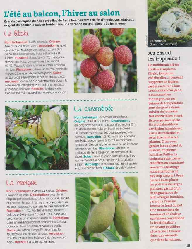 au jardin - Page 4 1a26