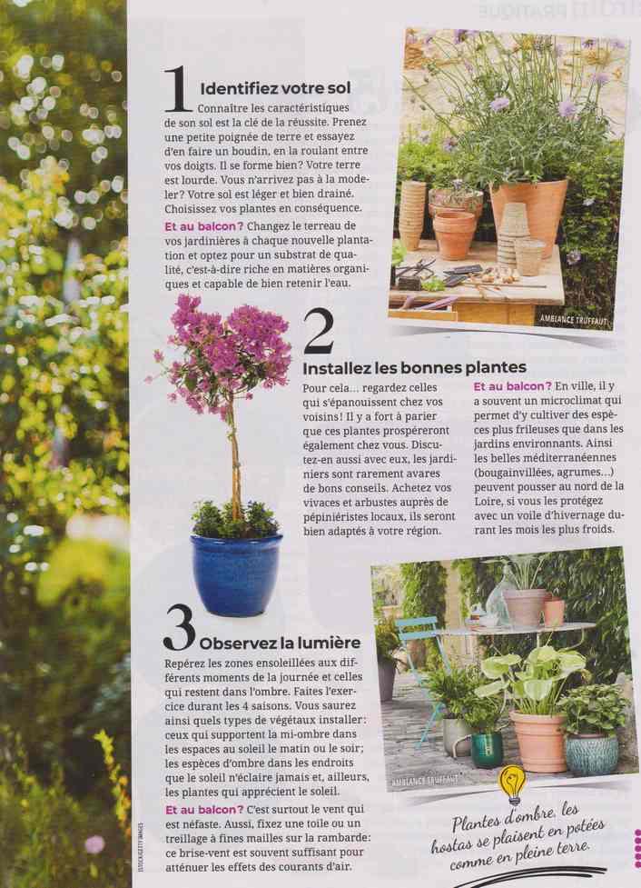 au jardin - Page 17 1a41