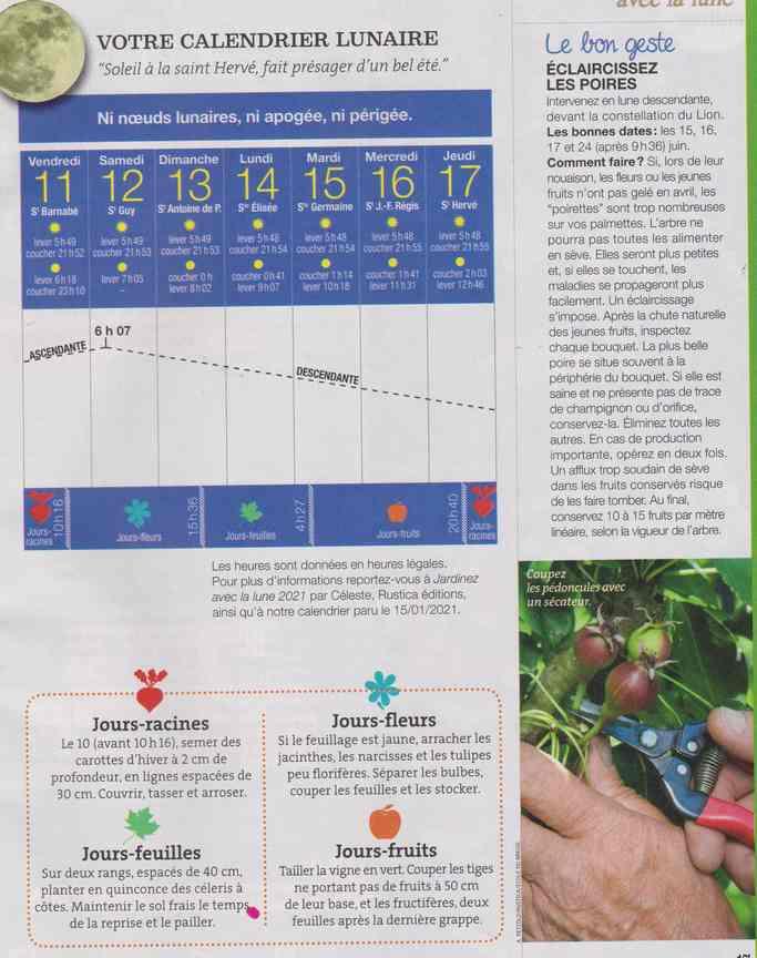votre calendrier lunaire de la semaine - Page 9 1a45