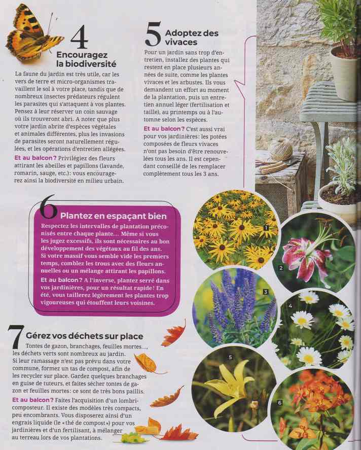 au jardin - Page 17 1b26
