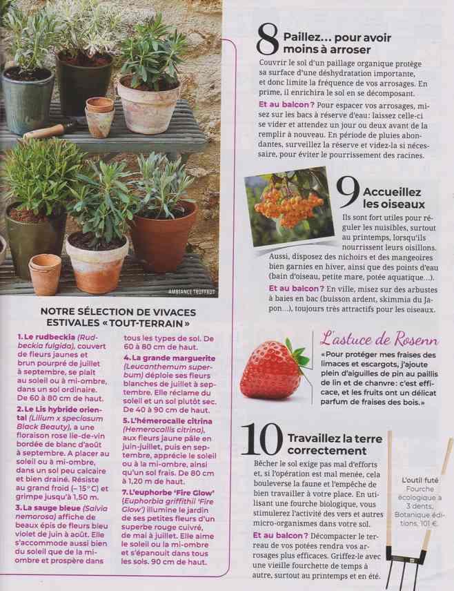 au jardin - Page 17 1c20