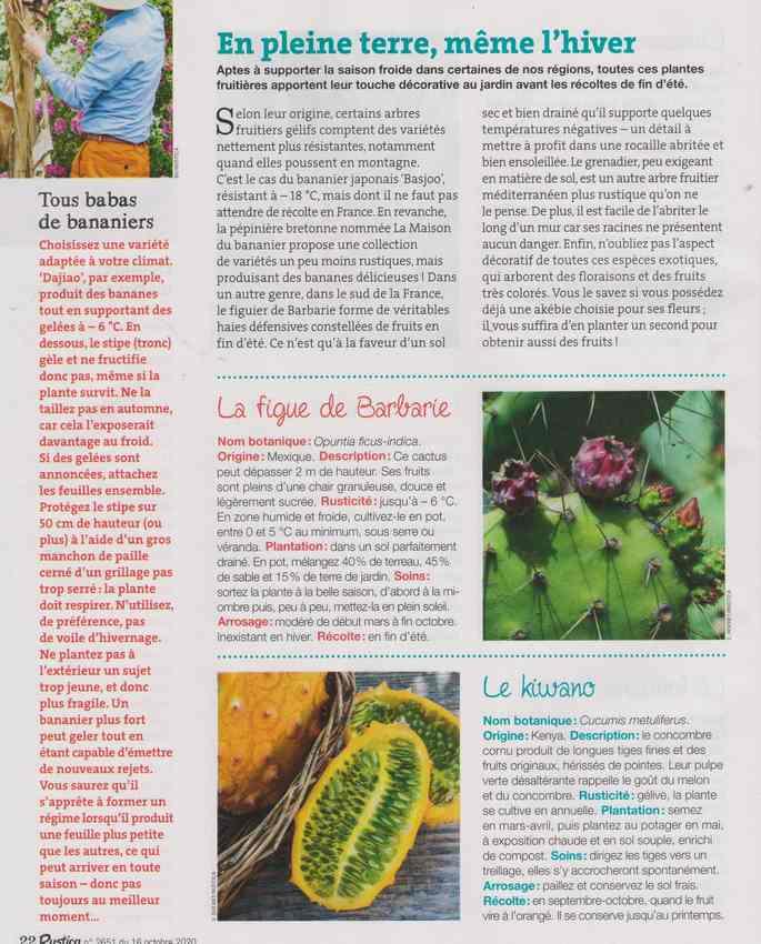 au jardin - Page 4 1d15