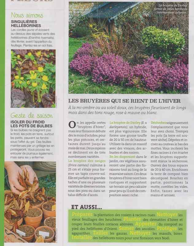 au jardin - Page 4 1d16